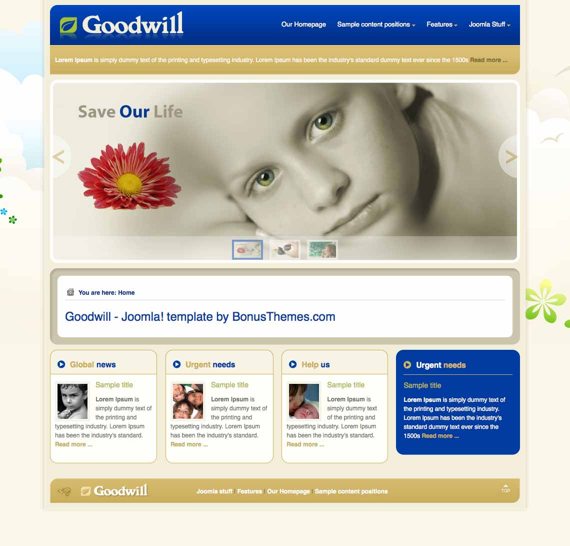Goodwill Template